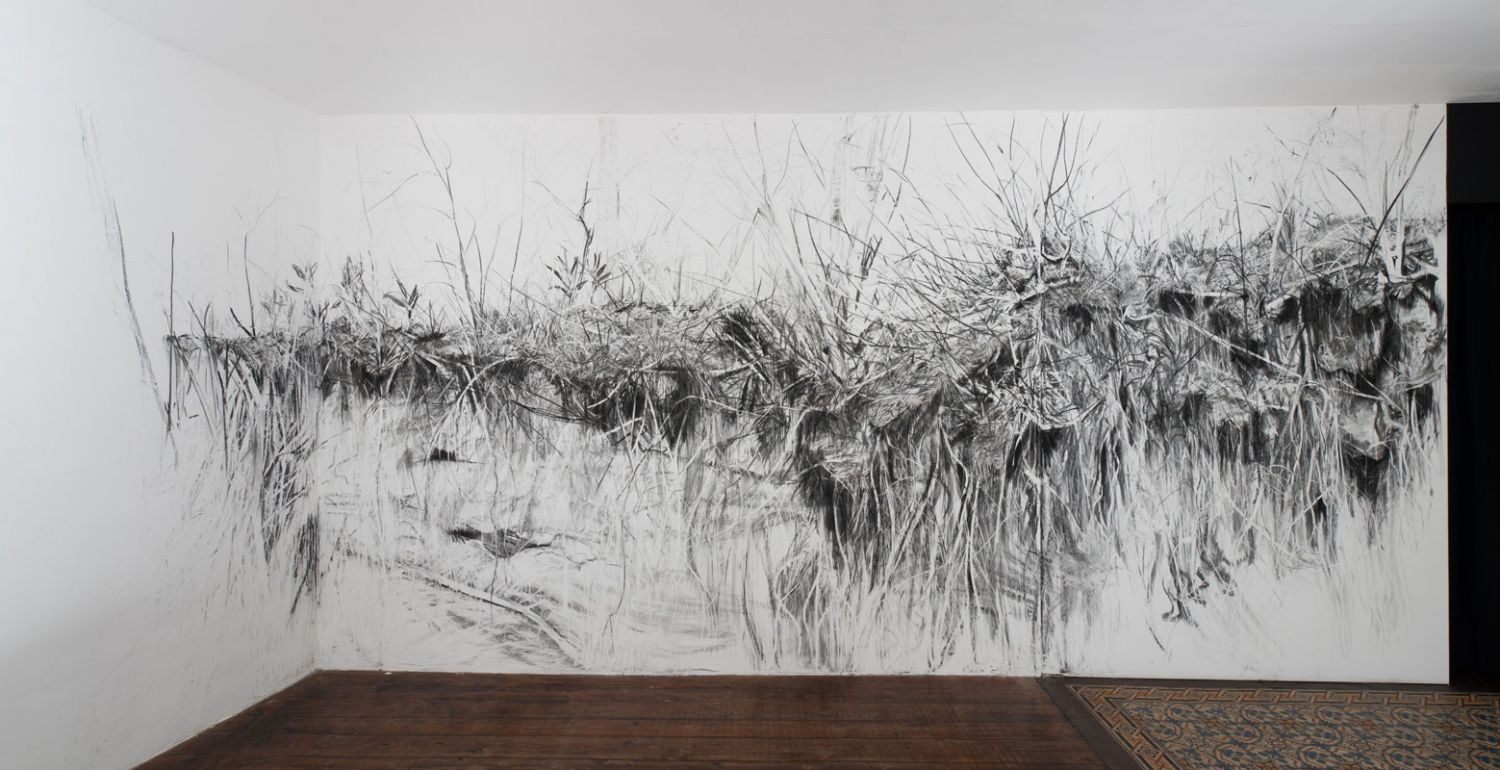 fran ois g not fusains charcoals ForDessin Mural