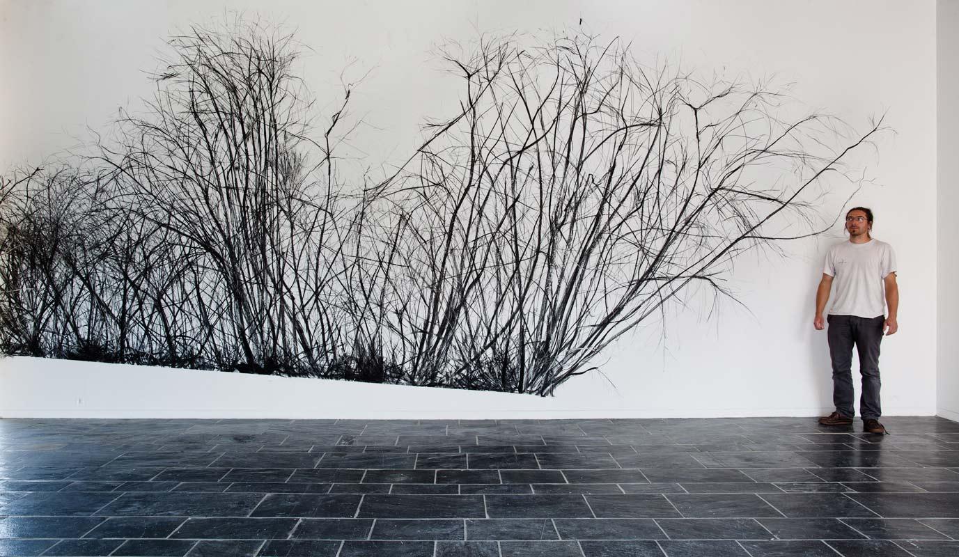 Fran ois g not fusains charcoals for Artiste dessin